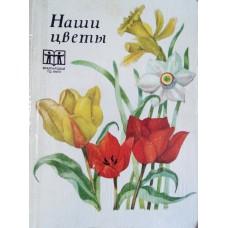 Масюкова М. А. Наши цветы. - Алма-Ата: «Кайнар», 1972. - 142 с.