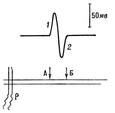Схема измерений мембранного