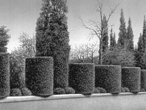 Декоративных деревьев в виде цилиндра