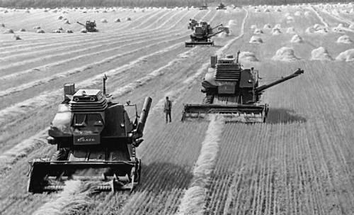 Картинки по запросу СССР сельское хозяйство