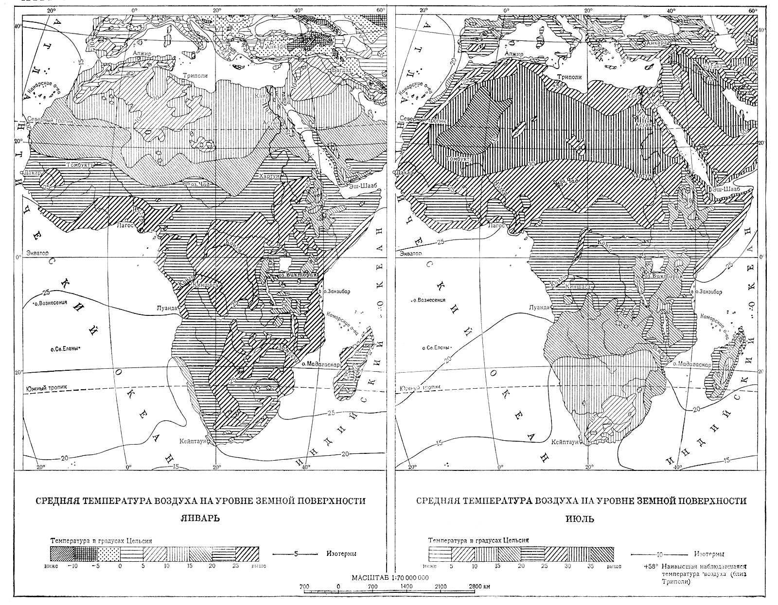 животный мир в жестколистных вечнозеленых лесов и кустарников африки презентация