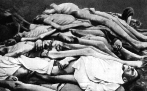 Фото людей в концлагере дахау голых женщин 4531 фотография