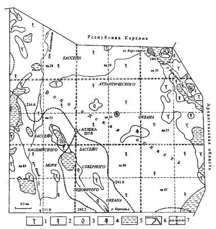 Карта лесов планируемого