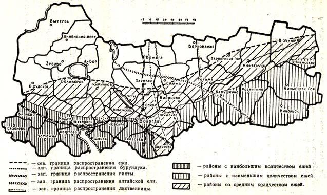 Рис. 2 Границы распространения