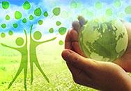 Итоги экологической интернет-викторины