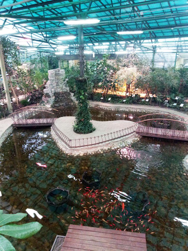 День влюбленных в Ботаническом саду
