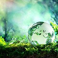 XVI межрегиональная творческая лаборатория «Экология. Культура. Образование»