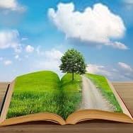 Объявлены итоги конкурса «Человек и природа в современной художественной литературе» среди библиотечных работников